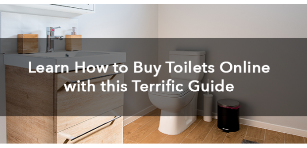 Learn How to Buy Toilets Online with this Terrific Guide
