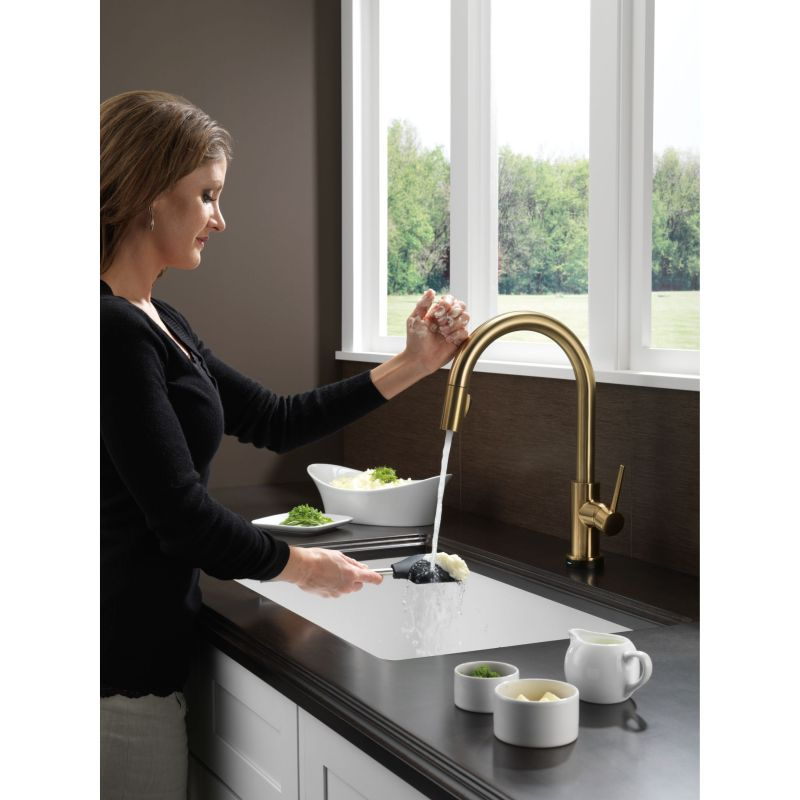 Delta Trinsic Single Handle Pull Down Kitchen Faucet