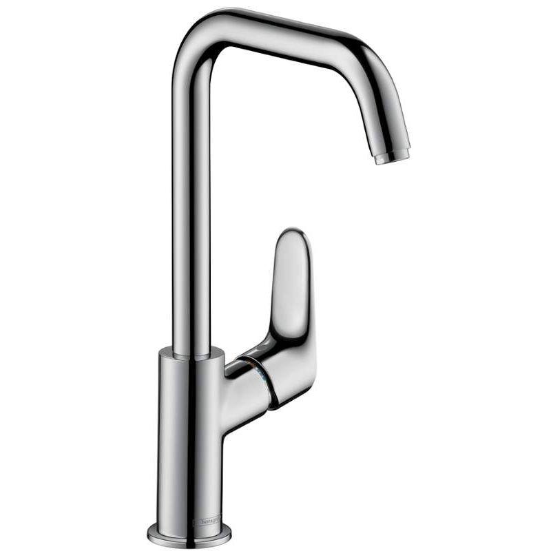 Buy Hansgrohe Focus 031609001 Online - Bath1.com