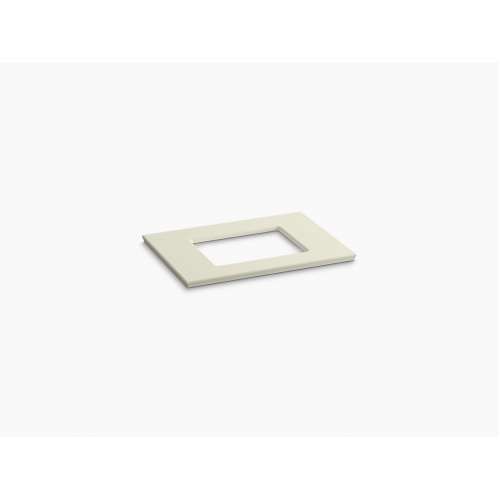 Kohler Solid-Expressions 31-in x 22-in K-5456-SM